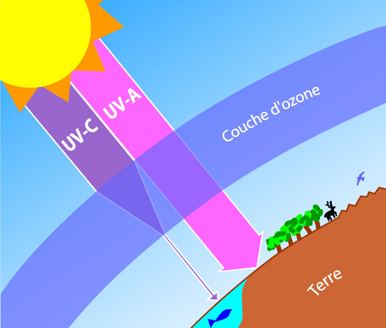 Tara arctic damocles - Distance entre la terre et la couche d ozone ...